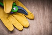 Leather protective glove with garden pruner — Stock Photo