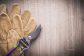 Sharp pruning shears and safety gloves — Stock Photo
