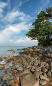 Coast of the tropical sea. Vertical landscape. Thailand, Phuket  — Stock Photo