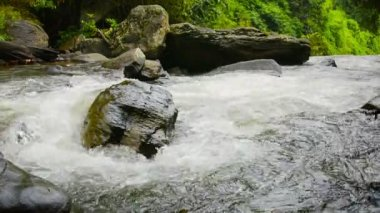 Video 1920x1080 - Whitewater Churns and Tumbles toward a Waterfall with Sound — Stock Video