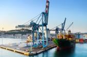 Ancona port — Stock Photo