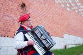 Poland street musician — Stock Photo