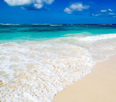 Blue caribbean sea beach — Stock Photo