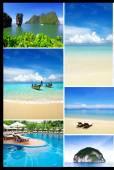 Tropical nature — Stock Photo