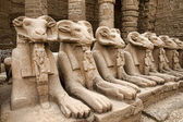 Karnak Temple in Luxor — Stock Photo