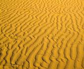 Sand texture in Gold desert — Stok fotoğraf