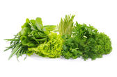 Fresh green herbs — Stock Photo