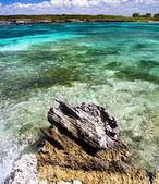 Caribbean sea beach — Stock Photo