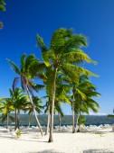 Tropical sea and blue sky — Stock Photo