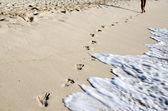 Footprints in beach — Stock Photo