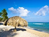 пляж и пальмы — Стоковое фото