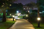 Zahrada v noci — Stock fotografie