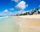 Caribbean Beach and Palms — Stock Photo