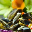 Salad mussels and vegetables — Stock Photo #61054709