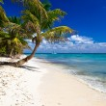 Palms and sea beach — Stock Photo #61061849
