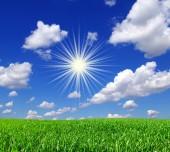 полевое и синее небо — Стоковое фото