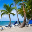Beach chairs under palms — Stock Photo #62199595