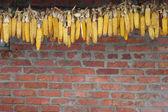 Piles of  corns — Stok fotoğraf