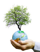 Hands holdings a globe — Stock Photo