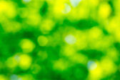 Green natural background — Stock Photo