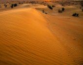 Desert landscape with sunset — Stock Photo