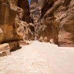 Siq narrow slot-canyon in Petra — Stock Photo #66749301