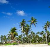 Caribbean  beach and tropical sea — Stock Photo