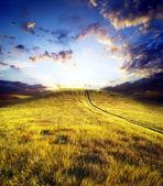 Path on mountain meadow — Stock Photo