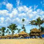 Beach chairs under palms — Stock Photo #74225557