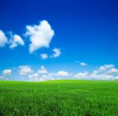 Himmel und grün-feld — Stockfoto