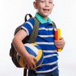 Happy schoolboy with backpack, ball and books isolated on white background — Stock Photo #55298989