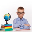 Cheerful Schoolboy ready to answer question isolated on a white background — Stock Photo #57577845