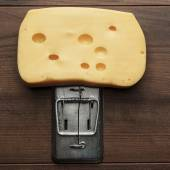 Big piece of cheese in mousetrap — Stock Photo