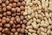 Peanuts and hazelnuts — Stock Photo