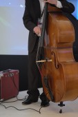 Man playing on a double-bass — Stok fotoğraf