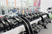 Dumbells in a rack — Stock Photo