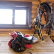 Horse equipment - saddlery — Stock Photo #63938015