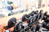 Sports dumbbells at gym — Stock Photo
