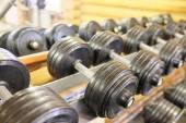 Dumbells in  rack at gym — Stock Photo