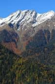 Abhazya, sonbahar manzara — Stok fotoğraf