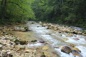 Caucasus river — Stock Photo