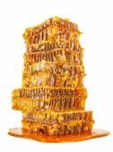 Сладкий honeycombs с медом — Стоковое фото