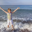 Boy enjoys the sea — Stock Photo #65684511