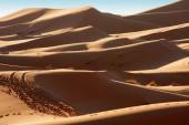 Sand dunes at sunrise — Stock Photo