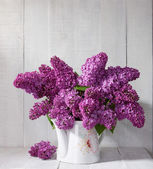 Lilac Bouquet in  jug — Stock Photo