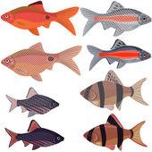 Exotische aquarienfische. — Stockvektor