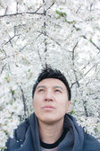 Asian man under   branches — Stock Photo