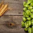 ������, ������: Hops and golden ripe wheat