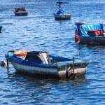 barcos de pesca en el mar de la bahía — Foto de Stock   #69192867