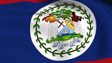 Flying Flag of Belize LOOPED — Stock Video